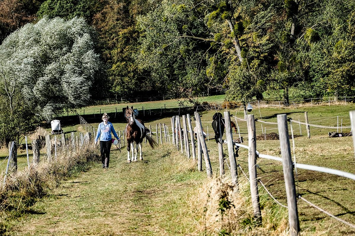 Paddock Trail auf über 6000 m²
